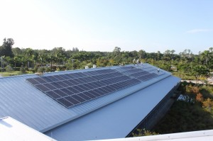 IMG 8274 300x199 Naples Botanical Garden Photovoltaic System   Progress Report