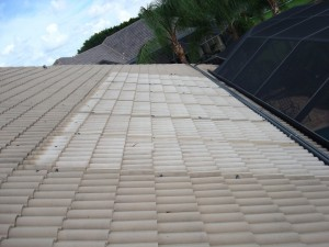 Clean Tile Roof Beneath Solar Panels