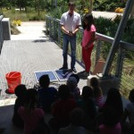 Using Ammeter to Test Solar Panels