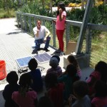 Learning How Angle of the Sun Affects Solar Panels